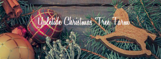 Yuletide Christmas Tree Farm - Yuletide Christmas Tree Farm €� Social Circle Community ENews
